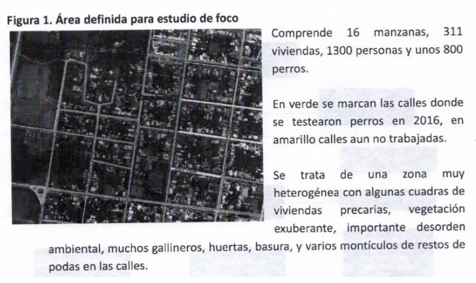 fragmento del informe oficial del MSP mostrando zona afectada.